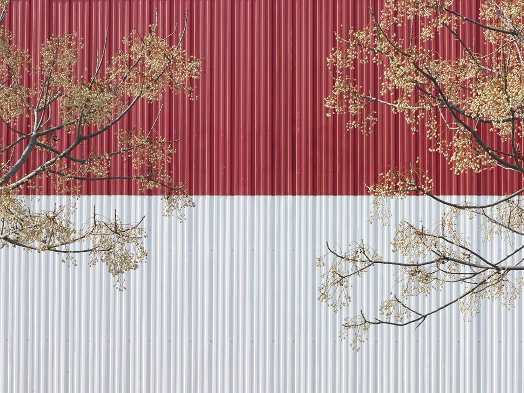 Grand Sud-TREE2